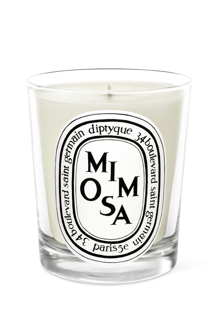 DTQ MIMOSA CANDLE 70G