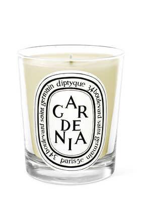 شمعة غاردينيا